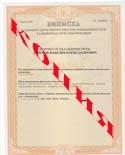 Грузоперевозки документы